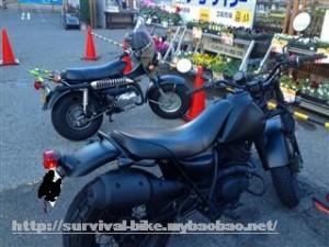サバイバルバイクバンバン90