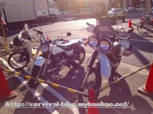 XR250バハとバンバン200